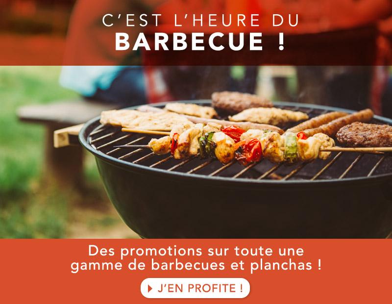 Barbecue 2021