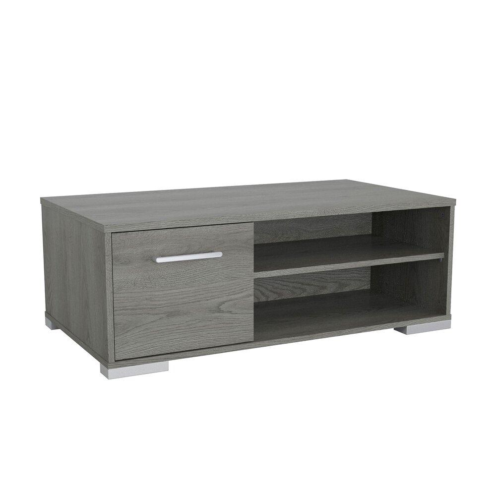 Table basse - Table basse 1 porte et 2 niches chêne grisé - ERWAN photo 1