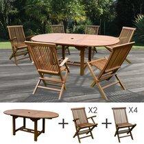 Table de jardin 160/210x100x75cm + lot de 4 chaises + 2 fauteuils